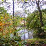 Wandertour im Homburger Ländchen Wald und Wasser