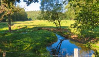 Wandern im Wildenburger Land mit Harald Hamel