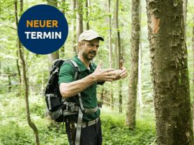 Person mit Rucksack im Wald