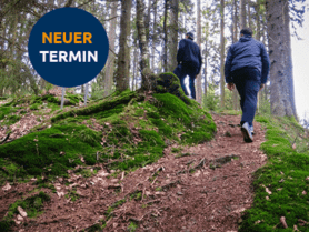 zwei Menschen laufen im Wald einen Berg hoch