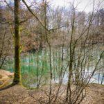 Ein See mit Wald drumherum, kein Laub