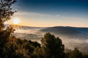 Meine Genuss-Highlights Südfrankreich