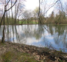 Blick auf eine Wasserfläche