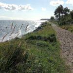 Pfad entlang der Küste am Fördesteig