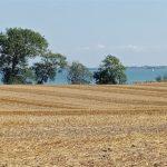 Blick über die Felder am Fördesteig